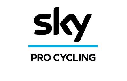 team_sky-landing_logo