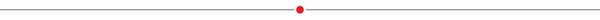 Thinline_reddot_0.5pt_600x20x-01-01